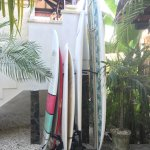 Nice choice of surfboards to rent