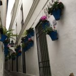 Photo of Calleja de las Flores