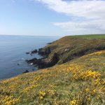Walked part of the cliff top walk - about 2.5km from Ballycotton there are steps down to a littl