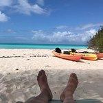Photo de Shannas Cove Resort