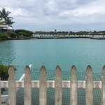 Photo de Hawks Cay Resort
