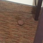 The reese's that lied on the floor for our entire stay