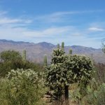 Rincon Mountain Visitor Center Foto
