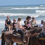 Horses On The Beach: Corpus Christi Foto