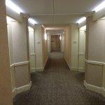 Interior view of Hallway / corridor