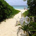 Foto de Lanikai Beach
