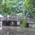 Photo of Bosque Rodrigues Alves - Jardim Botanico da Amazonia