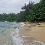 beach is very private, lots of shade & open space
