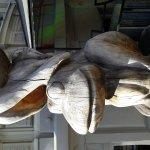Lidojosa Varde The Flying Frog Foto
