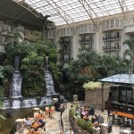 Waterfalls inside the hotel!