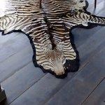i love the zebra skin coat