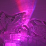 Levi Ice Gallery, pokemon room