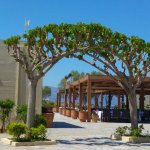Photo of Kalimera Kriti Hotel Village Resort