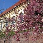 Foto de Dachau Palace and Court Garden