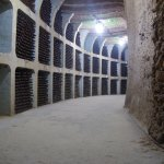 Wine collection cellar