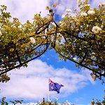 Rose and Australian Flag