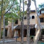 Photo of Tuli Tiger Resort