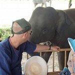 Amazing experience with Lanna Kingdom elephants