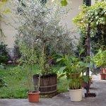 Photo of Toscani da Sempre Locanda con cucina