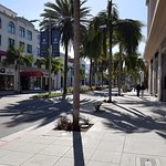 Rodeo Drive in March.