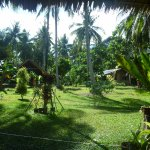 View looking out from longhouse