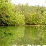Le Lac de Lupiac