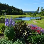 View of our Pond and the rolling hills towards Royal Deeside