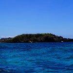 Crocodile Island Foto
