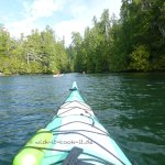 Wish-it-cook-it Majestic Oceam Kayaking Ucluelet, BC, Kanada