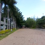 People's park in maintained by the City Government of Davao.