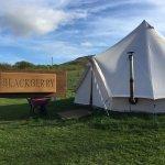 Wheelbarrows, hot tubs & tents!