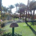 Foto de Nubian Village Hotel