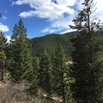 View from hiking trails on our property