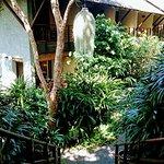 KS hillside garden view room 16 - opposite yoga pavilion