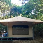 Eco-tent