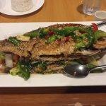 Sanpper Cha Cha Cha - Thai Wasabi on SR64, Bradenton FL