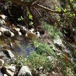 Foto de Ruta de Los Cahorros