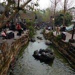 Photo of Huanglongxi Ancient Town