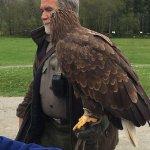 Eagles Flying Foto