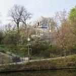Foto de Tiergarten