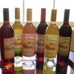 St. Kathryn Cellars makes a full spectrum of fruit and botanical wines.