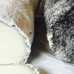 Quesos Frescos de Cabra (leche de Cajica)