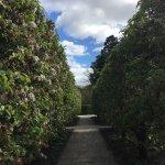 Foto de The Alnwick Garden