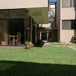 Photo of Hotel Bresciani