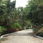 Photo of Grand Sirenis Riviera Maya Resort & Spa