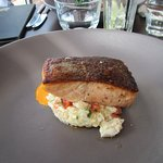 Grilled Salmon main