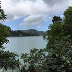 Foto de Lagoa Azul, Sao Miguel Acores