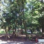 Photo of Hibiya Park