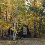 Single Queen Duplex Cabin