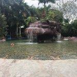 Photo de Baldi Hot Springs Hotel Resort & Spa